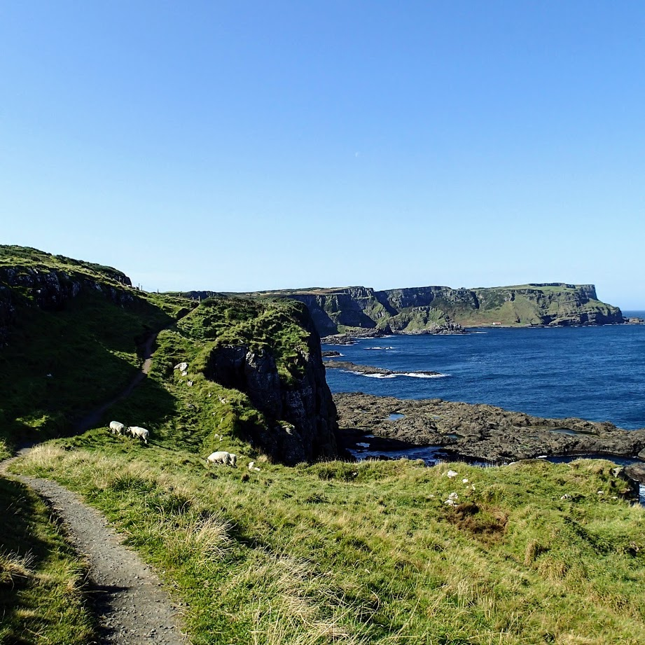 Cliff view in Ireland to the ocean